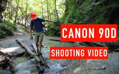 Canon 90D for Shooting Video and would I upgrade from the 80D?